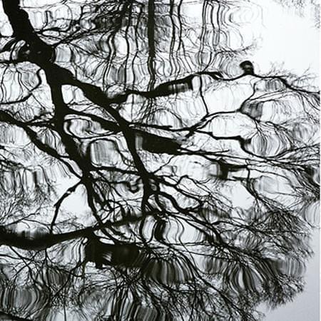 008Ciuco2017 Tinta Fotografía impresa sobre tela mediante sublimación 40 x 40 cm 2007