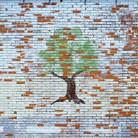 010Ciuco2017 Árbol Fotografía impresa sobre tela mediante sublimación 40 x 40 cm 2010