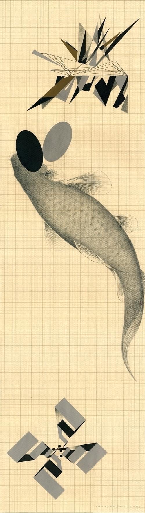 09-Montania, carpa, vortice