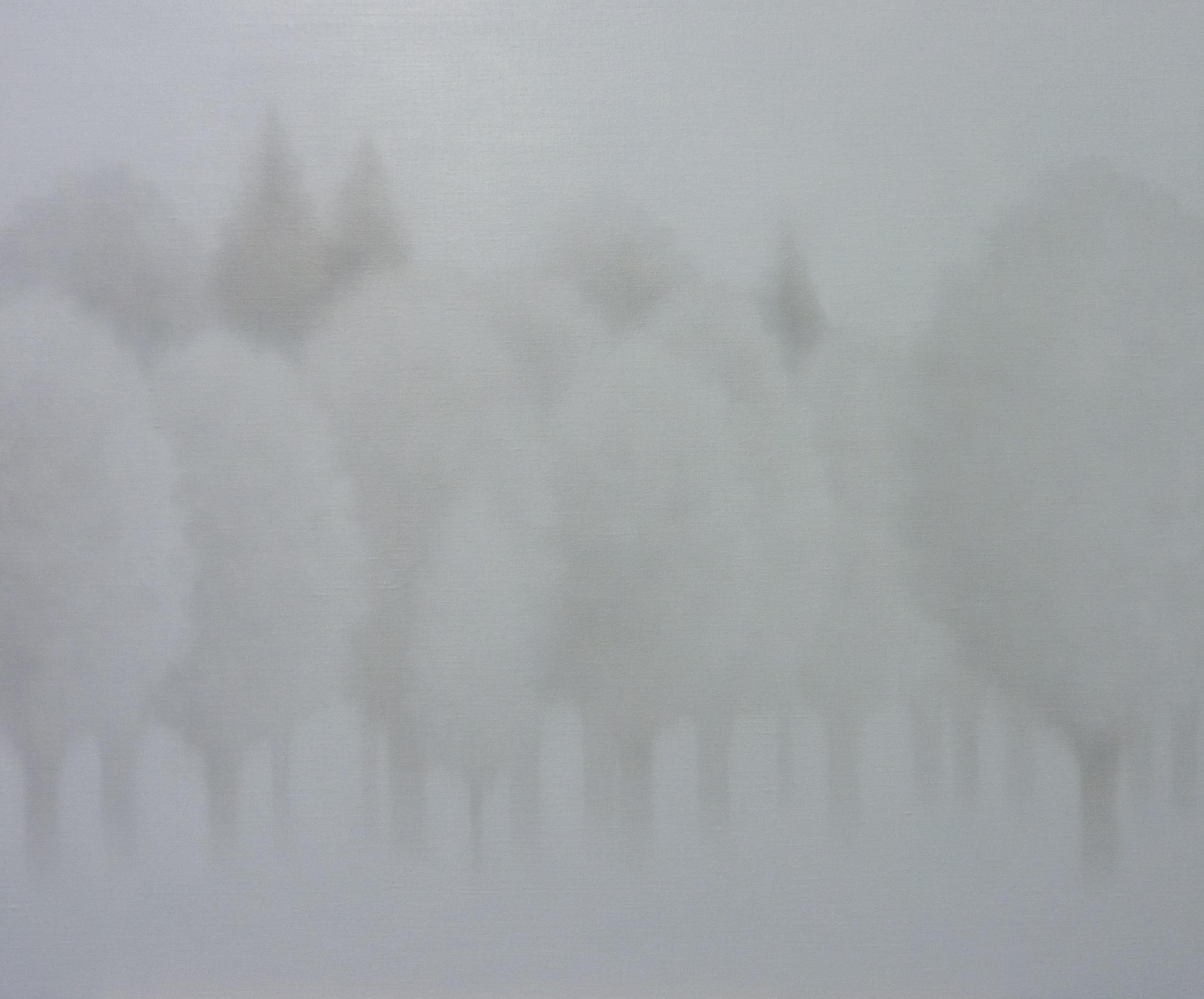 13-LW081. LEO WELLMAR Frozen Shadows Óleo sobre lienzo 130 x 162 cm 2015