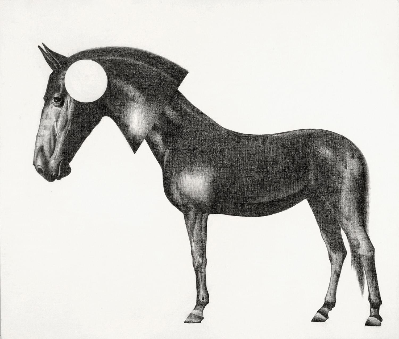 CU343.Alienación-Domesticado Grafito sobre papel 55 x 65 cm 2015