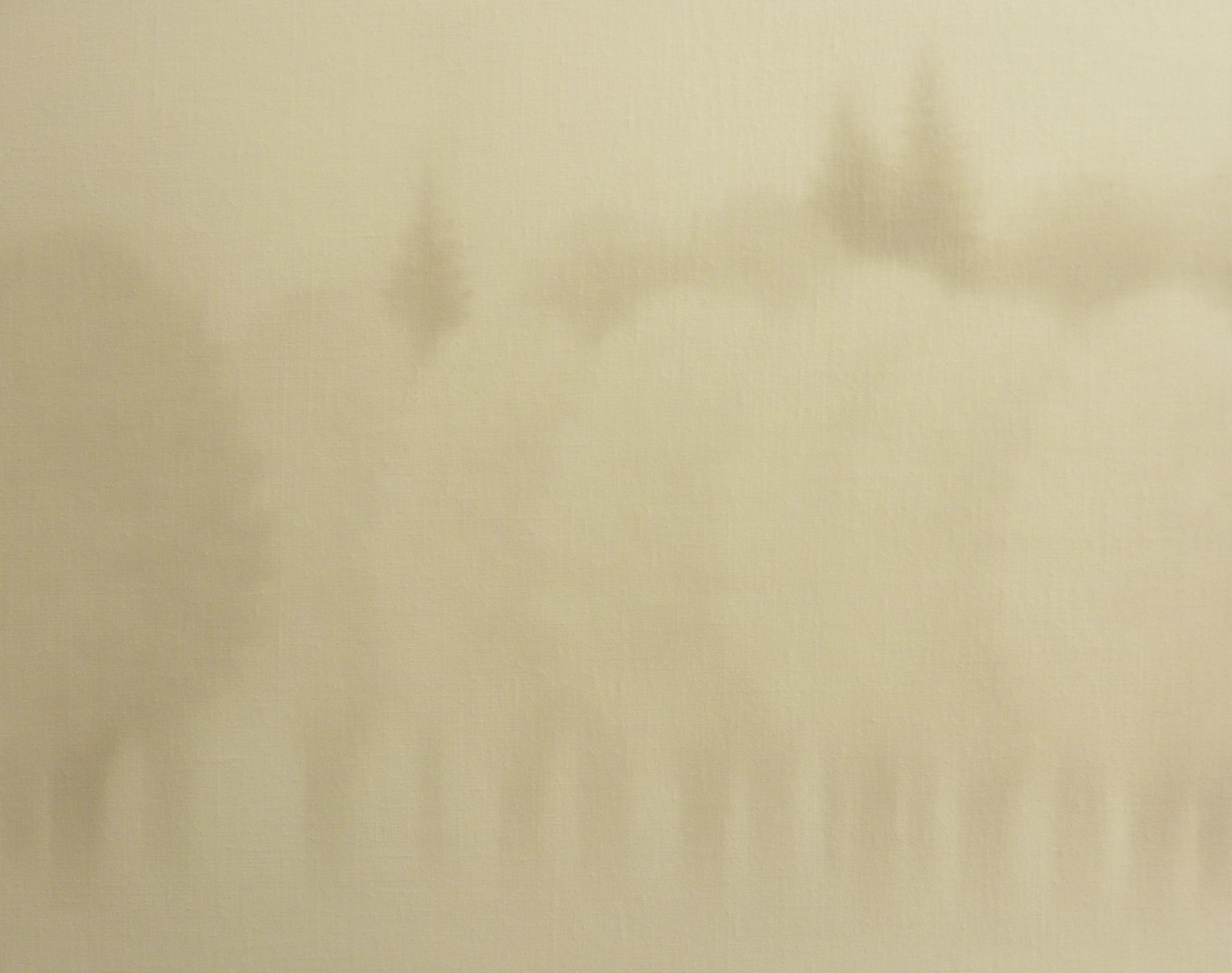 LW087 Frozen Shadows Óleo sobre lienzo 33 x 41 cm. 2016